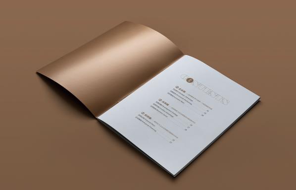 公司画册印刷 第2张