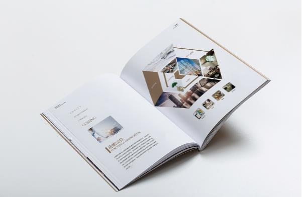 公司画册印刷 第5张