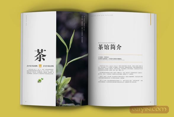 公司画册设计需要注意些什么?    第2张
